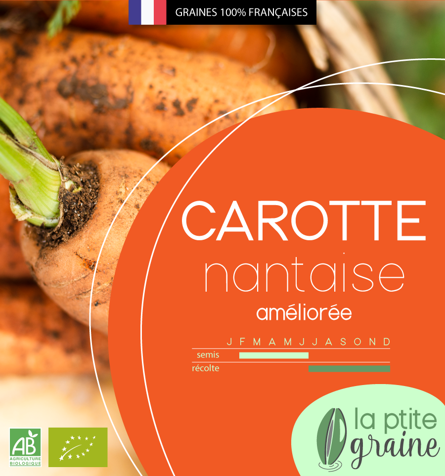 Packaging alimentaire graines carottes facing