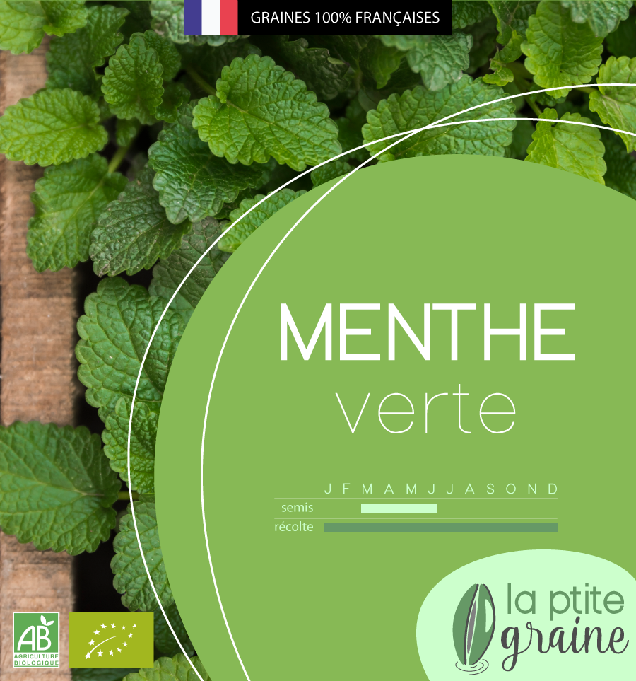 Packaging alimentaire graines menthe facing