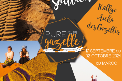Flyer Pure Gazelle A5
