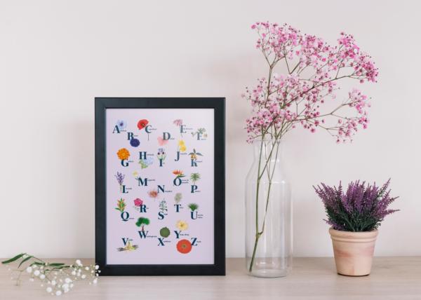 Abécédaire des fleurs ambiance - Illunimes